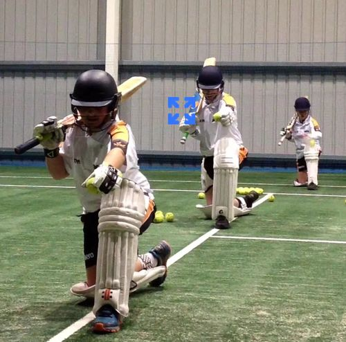 Sweeping Drill- Spin and Batting squad