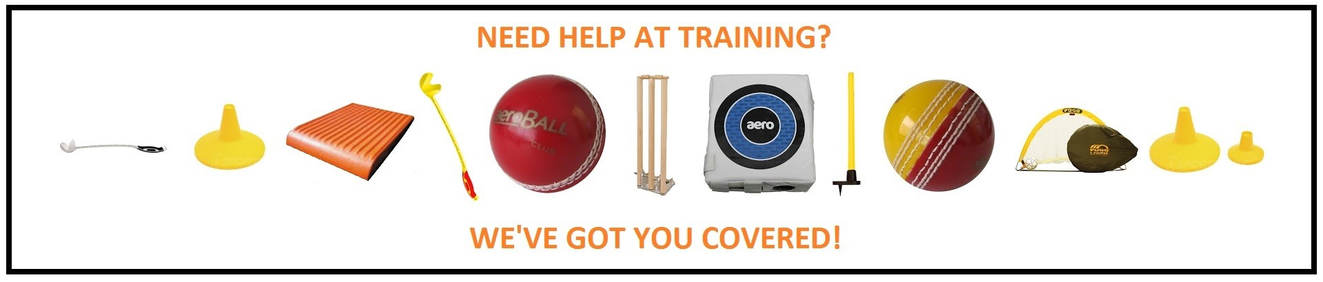 Cricket training aids